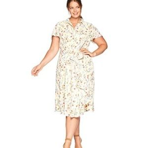 Tahari Arthur Levine Georgette Shirt Dress 22W